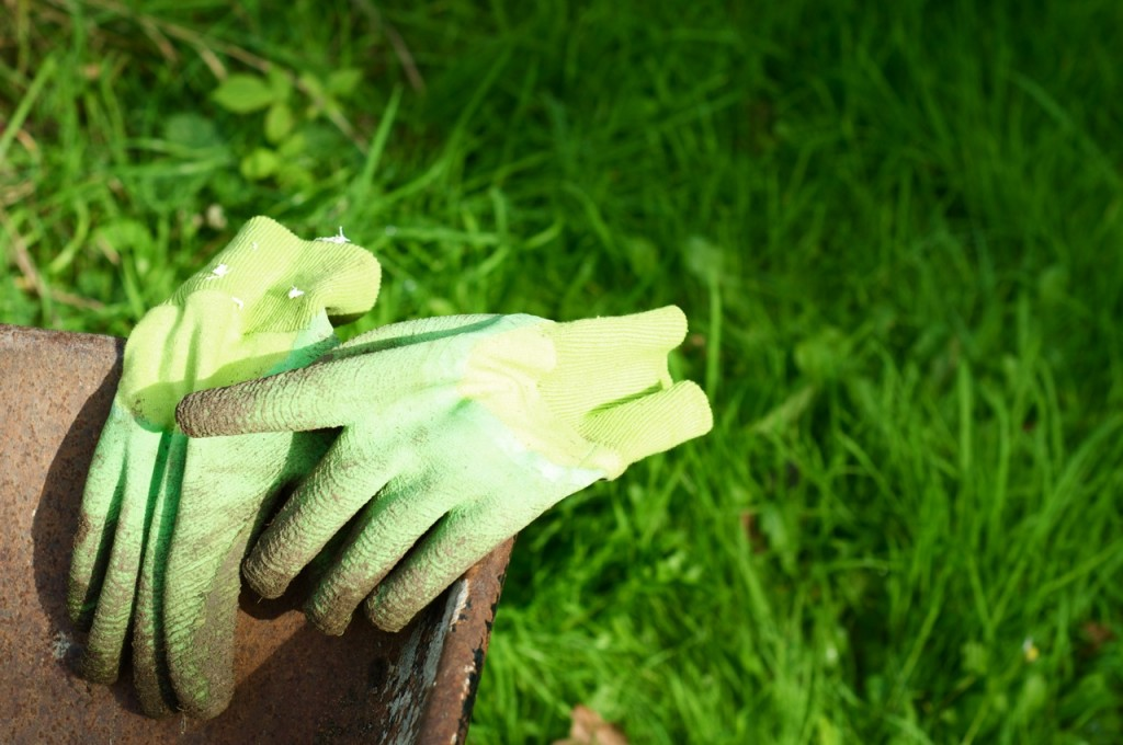 green-gardening-gloves[1]