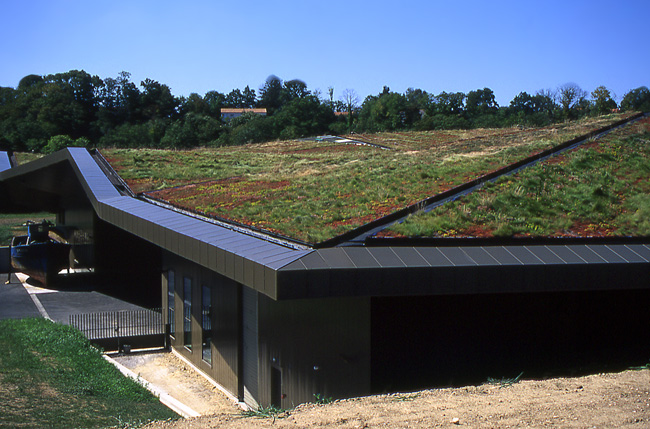 green roof3