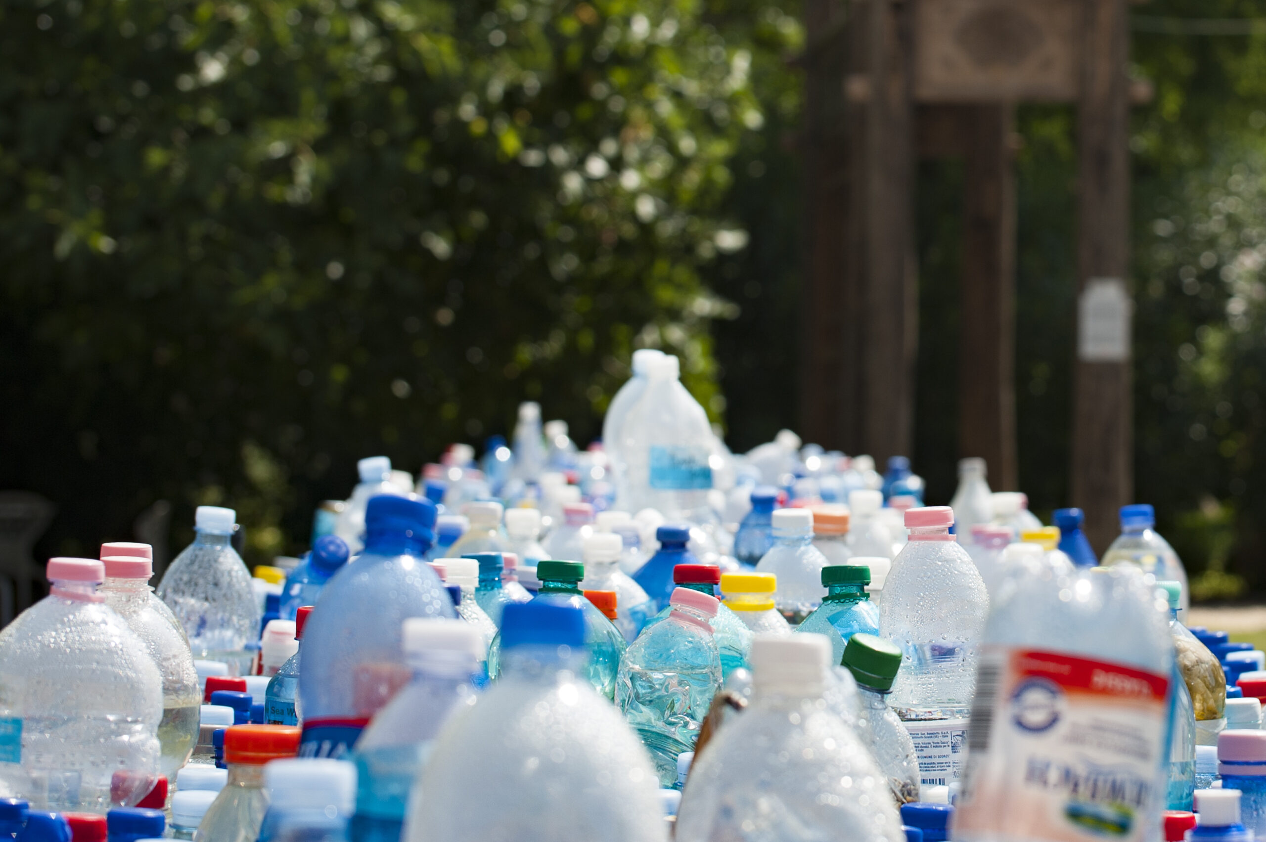 Teaching Children About Waste: 10 Easy Tips